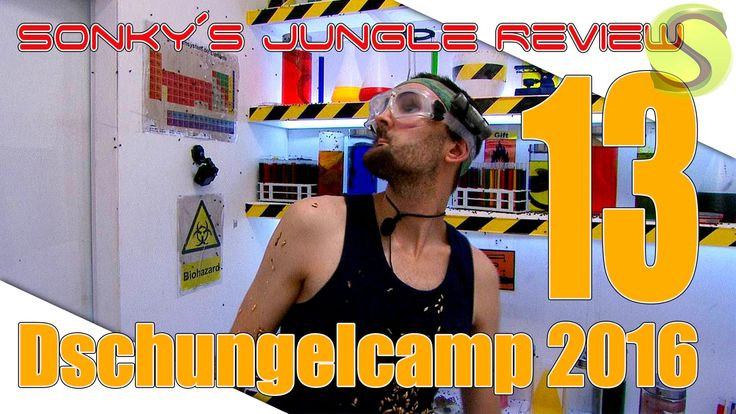 Dschungelcamp 2016 ▼ DAY 13 ▼ Sonky´s Jungle Review ▼
