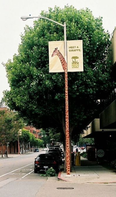 """Giraffe advertises the zoo... -- Click through for """"Creative Pole and Wire Advertising -- When advertising space is at a premium, you have to get creative."""""""