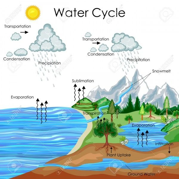 Water Cycle Diagram With Explanation Water Cycle Diagram Water