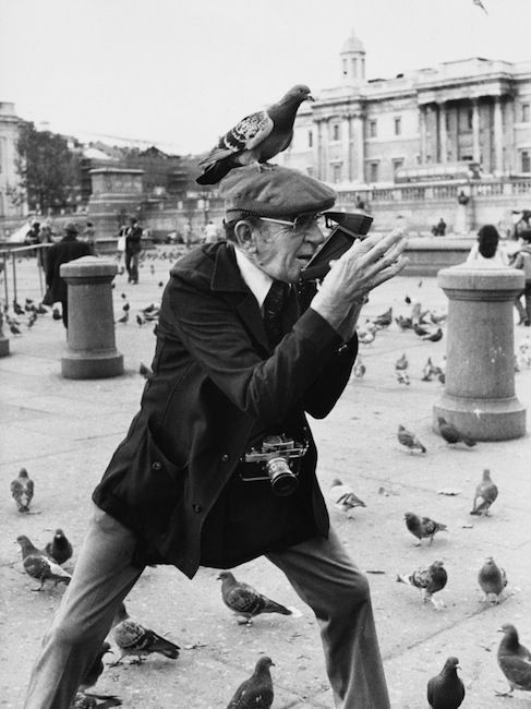 Shirley Baker - an elderly photographer in trafalgar square takes a polaroid photograph with a pigeon perched comedically on his flat cap, 1978