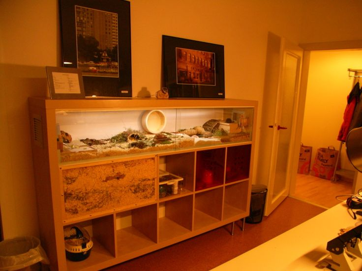 A Cozy Hamster Home Made From a Bookshelf The Best Hacks From the Fan Site Ikea Doesn't Want You To See