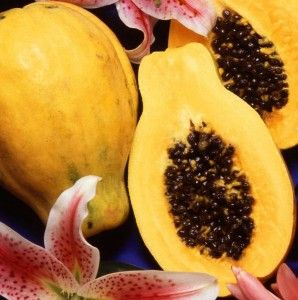 8 Best Images About Papaya Beauty Recipes On Pinterest Spreads Homemade And Blenders
