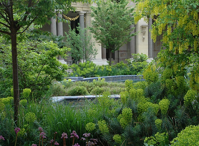 Le Petite Palais's gardens...I don't normally like euphorbia, but this is stunning