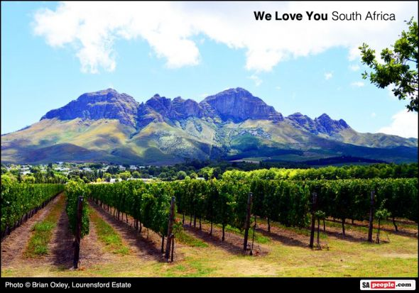 CNN's top 10 South African Wine Farms - SAPeople - Your Worldwide South African Community