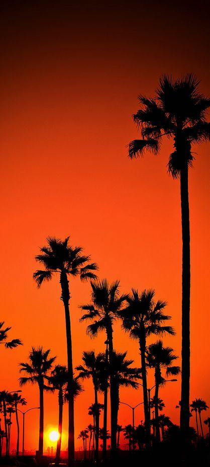 Newport Beach, California sunset.   mother nature moments #UDGetaway #UrbanDecay