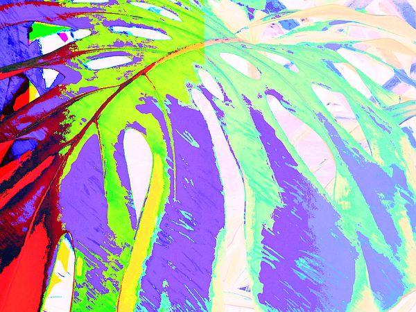 Monsteria Leaf 1 - Digital Fine Art prints by Rheta-Mari Kotze