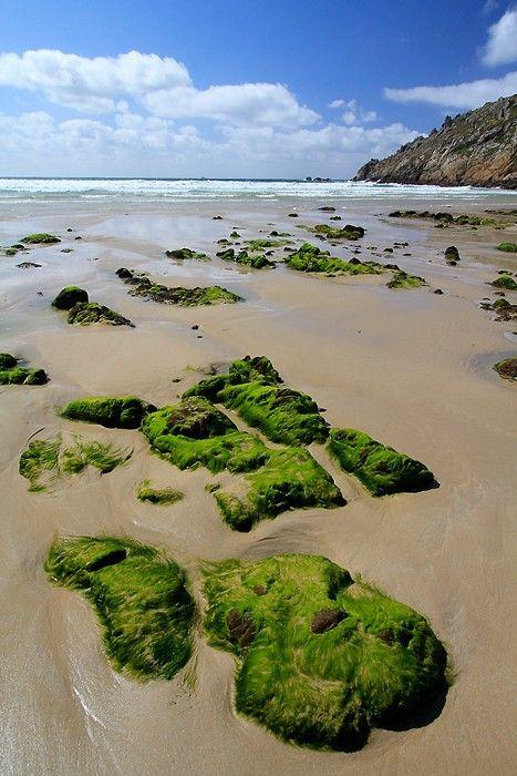 Plage de la baie des Trépassés en Bretagne - 15/052012 - Photo 10849