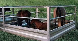 caballos-corral