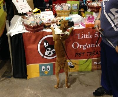 """Please Dad can you get me some...."" Little Sadie's All Naturals booth at the Amazing Pet Expo 2015 - Tampa Bay"