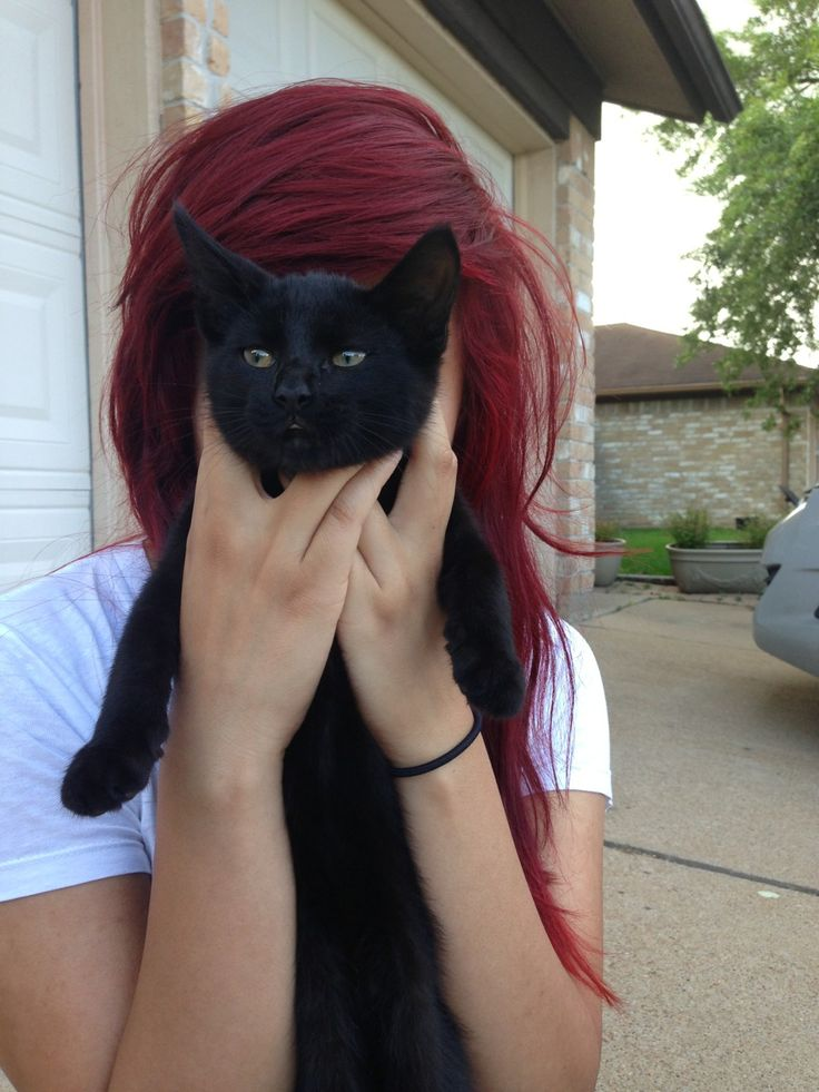 I adore this velvety red hair color! ❤ the kitty is cute too :)