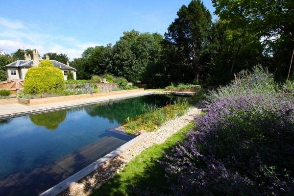 Schwimmteich bauen rechteckig kies vegetation