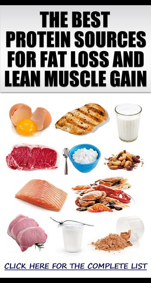 Nutrition Articles Fat 18
