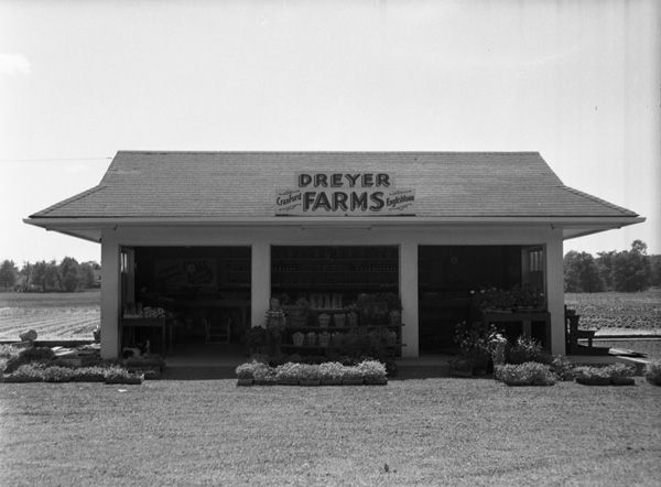 Dreyer Farms Cranford Nj Pictures Google Search
