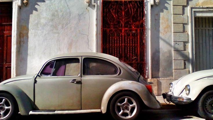 Vocho #merida #mexico #zonamerida #zona #vocho