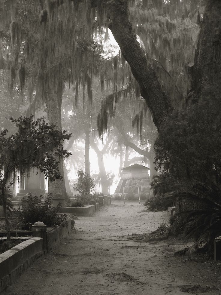 Bonaventure Cemetery, Savannah, photo by Dick Bjornseth