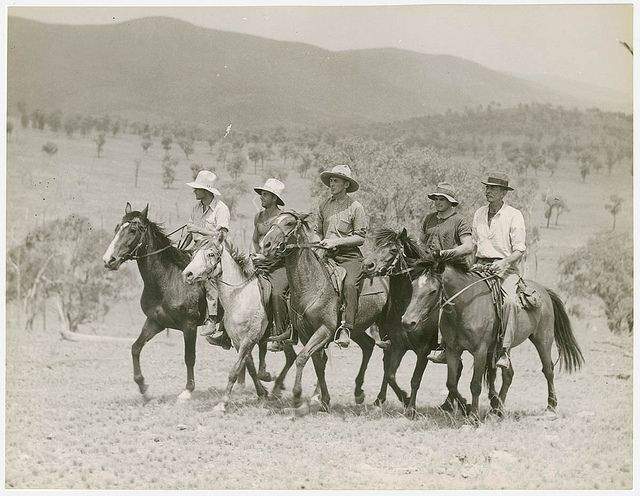 Drovers, Roseneath sheep station, Tenterfield, 1942 / unknown photographer for Walkabout magazine by State Library of New South Wales collection, via Flickr