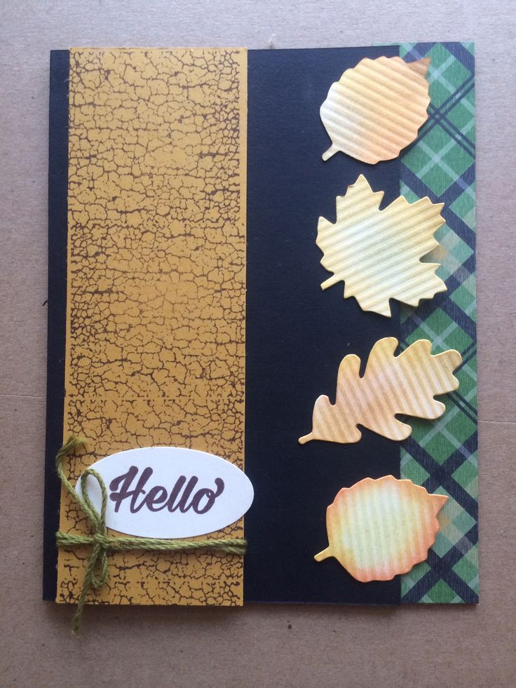 Stampin Up Paper Pumpkin alternative October 2016 by Pat McG.