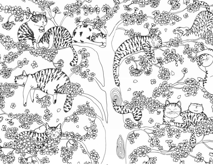 One Million Cats Is A Coloring Book Created For All Those Who Love Let The Cover As Soon Summed Cat Painting Blends Pretty Smile Are