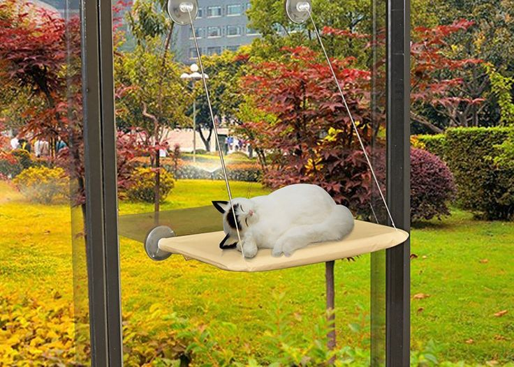 A kitty Cat Window Perch Seat 56*32 cm New Start Promotion   : Cats furniture