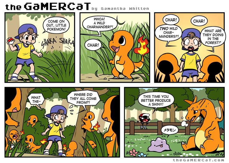 Pokemon and Gamer Cat the environmental impact of breeding.