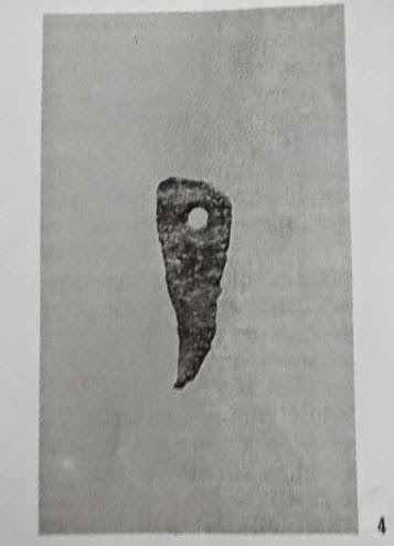 Pendaglietto-artiglio di bronzo, da Perda 'e Accuzzai . Cocco-Usai 1987