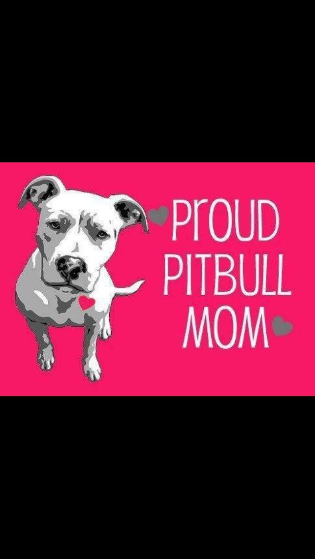 1000+ images about Cute animals on Pinterest | Puppys, Pit bull and ...