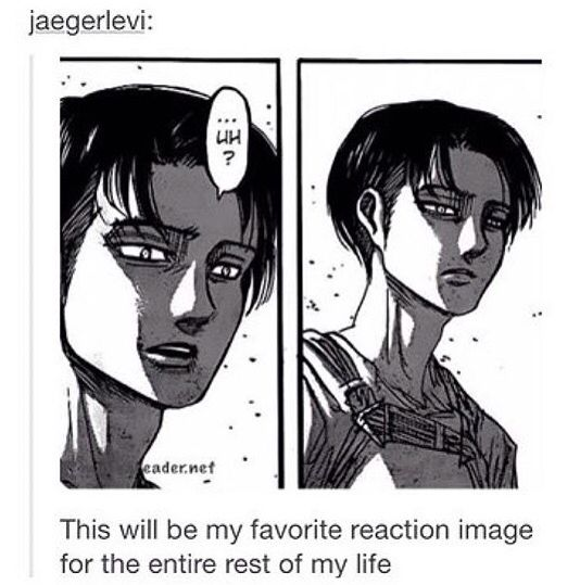But Levi Actually Reacted To Something Give Him Credit
