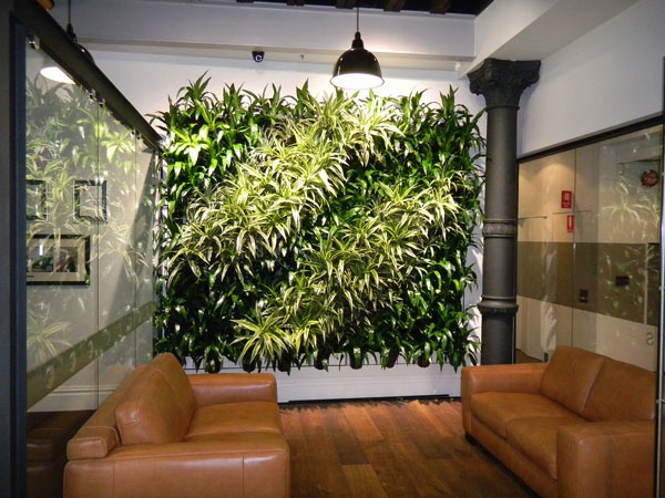 A green wall makes a waiting room interesting.