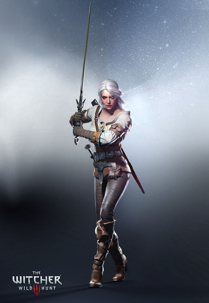 Retrouvez l'image n°217 sur un total de 310 pour The Witcher 3 : Traque sauvage sur PlayStation 4, PC, Xbox One