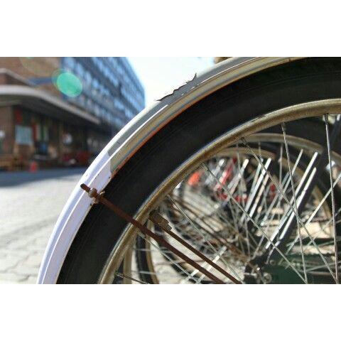 Beautiful bicycle spokes