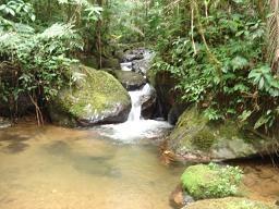 Bitaco, Colombia