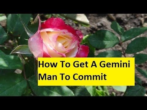 How To Get A Gemini Man To Commit - YouTube