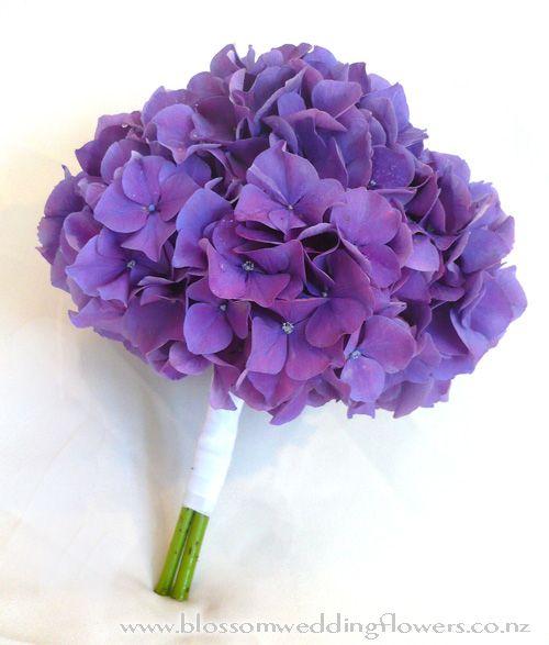 purple hydrangea - Cerca con Google