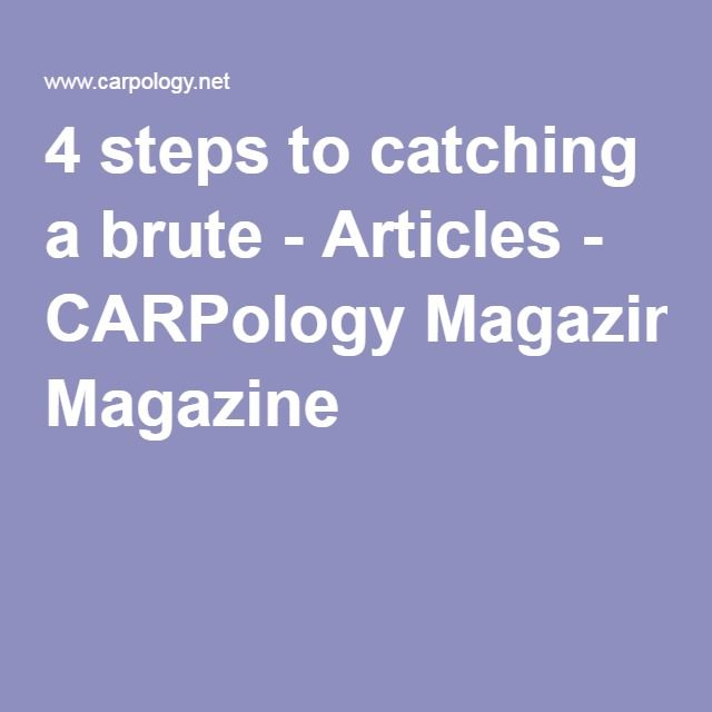 4 steps to catching a brute - Articles - CARPology Magazine