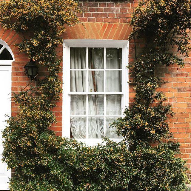 "Jeska Hearne, ""A Window into Autumn"""
