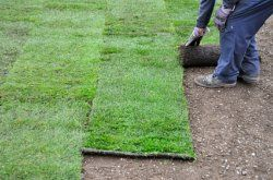 How to Lay Sod   Planting New Grass   Lawn Repair. I found this very helpful when we put in our yard.