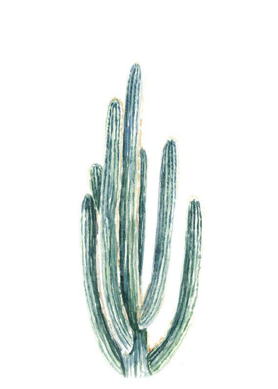 Cactus Print - cactus painting - cacti - cactus watercolor - home decor painting - southwestern painting - greenery - cacti art - southwest