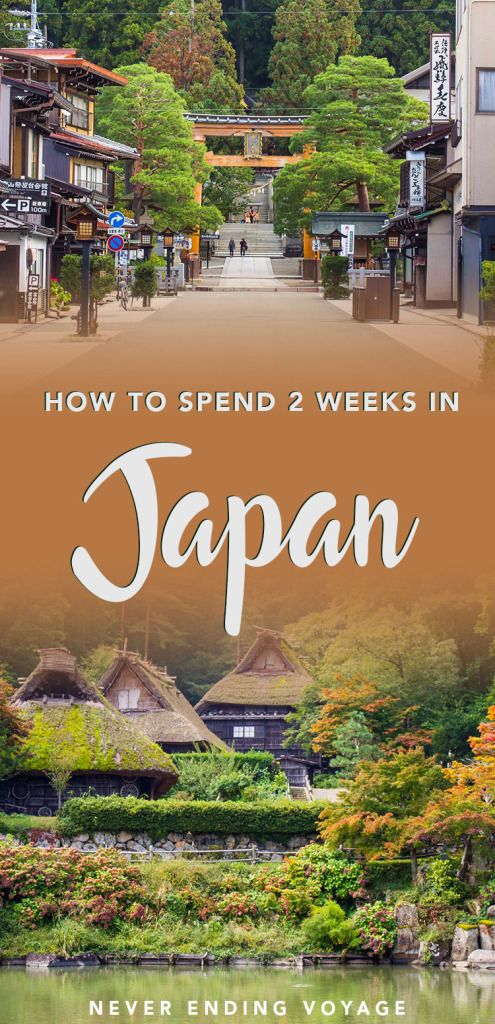 Here's our full 2 week itinerary guide to Japan! From Tokyo to Kyoto, here are things to do, what to eat, where to stay, budget tips, and more! #japan #itinerary