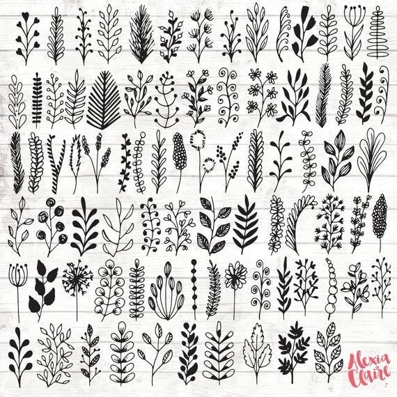 Leaf Botanical Clipart – 84 Hand Drawn Leaf branches Clipart – Leaf Brand Artwork – Botanical Brand Components – botanical Illustration – ACGABW13