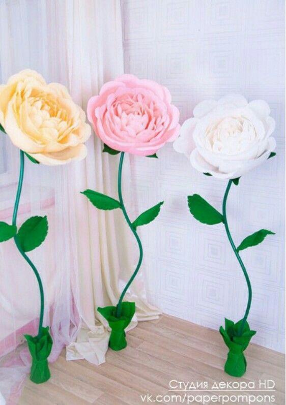 pin by decor studio la fleur on flowers
