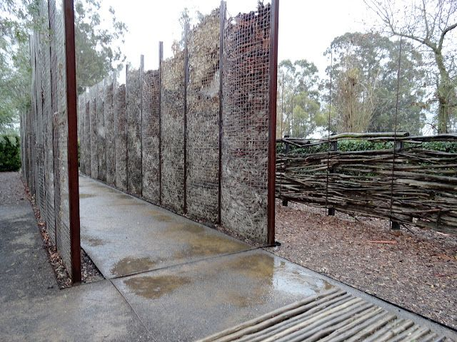 Landscaping For Privacy Quot Leaf Gabion Quot Danger Garden The