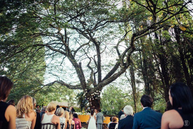 Luiza + Rodolfo – {Fazenda Santa Bárbara – Itatiba/SP} fotografia casamento sensível, romântica, casamento ao ar livre, casamento no campo, cerimonia debaixo da arvore