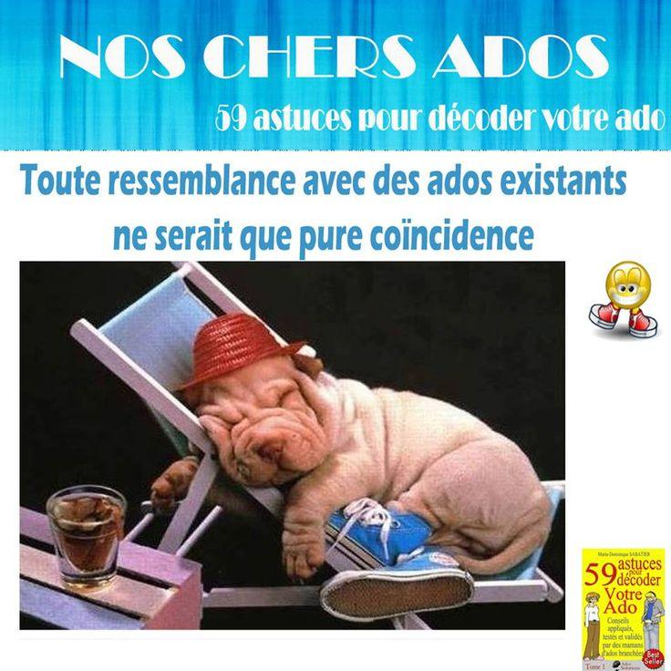 Annuaire généraliste des sites internet francophone