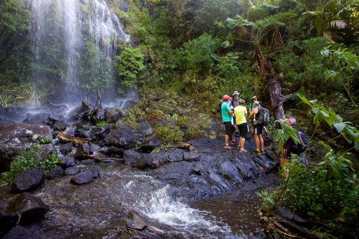Adventure Challenge group at the Big Waterfall | Lord Howe Island