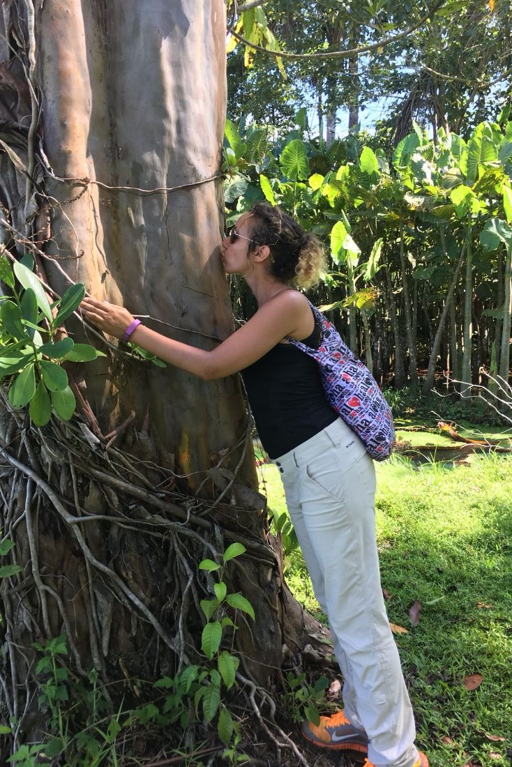 Sometimes Nature is so beautiful...you just have to kiss it. Although you always want to be careful in the Amazon, as some trees house fire ants that will bite you as soon as you lay a finger on the tree. And yes, you will end up in a hospital.  #treekiss #junglelove #sacredtree #beautifulnature #naturenurture