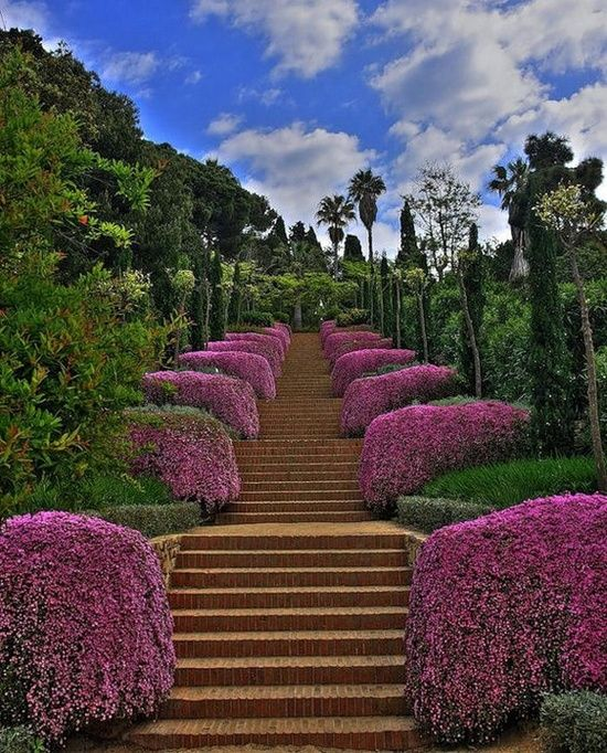 Botanic Garden,/