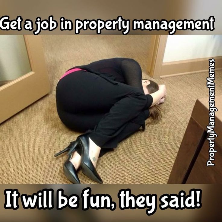 Apartment Leasing Office: 25+ Unique Property Management Humor Ideas On Pinterest