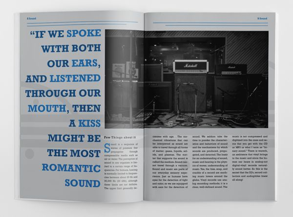 Spread from vinylia promotional magazine