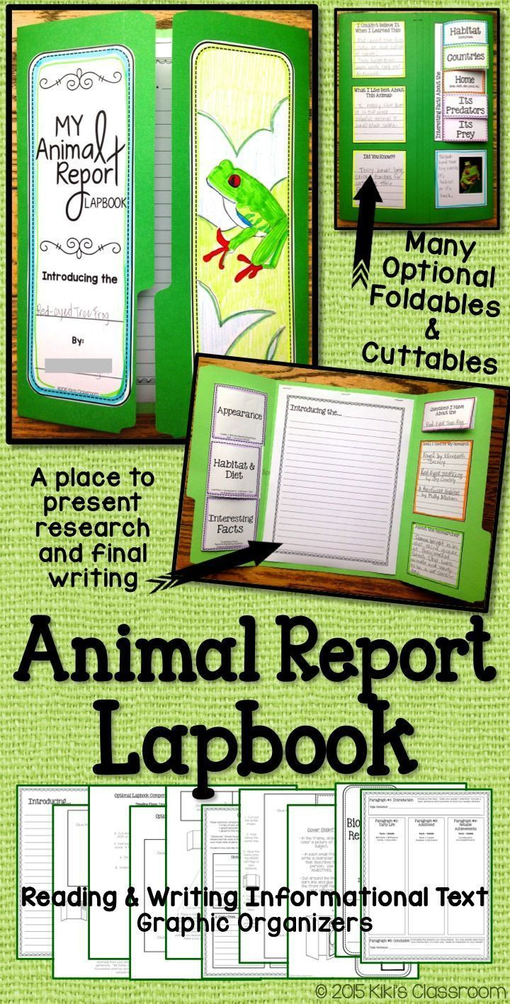 Animal Report • Third Grade • Informational Writing • Lapbook                                                                                                                                                                                 More