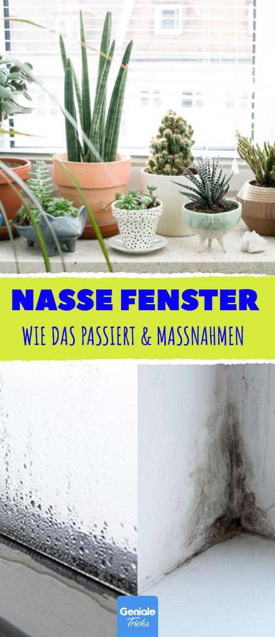 5 Gründe für nasse Fenster & welche Maßnahmen sie erfordern. #feuchtigkeit #h…